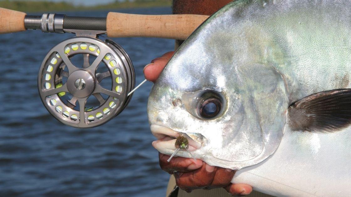 Permis de pêche : tout ce qu'il y a à savoir